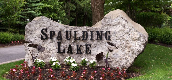 Spaulding Lake Real Estate